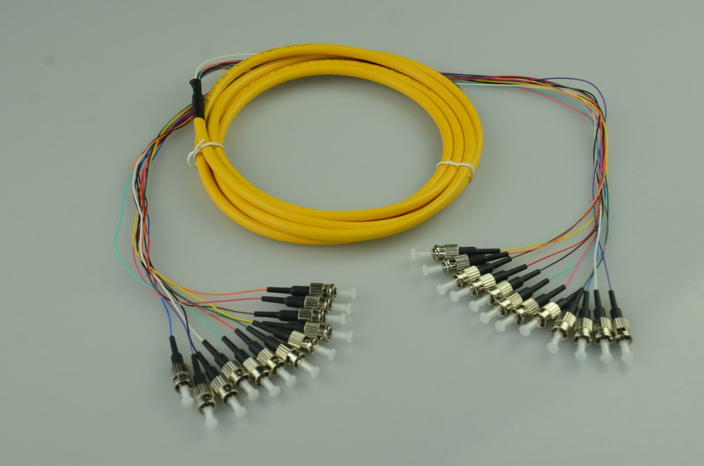 12-Core Optical Patch Cord ST-PC
